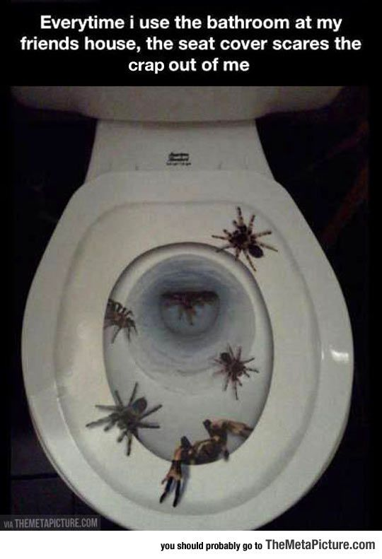 The Scariest Toilet Seat Cover Ever. The Scariest Toilet Seat Cover Ever   Toilet seat covers  Home and