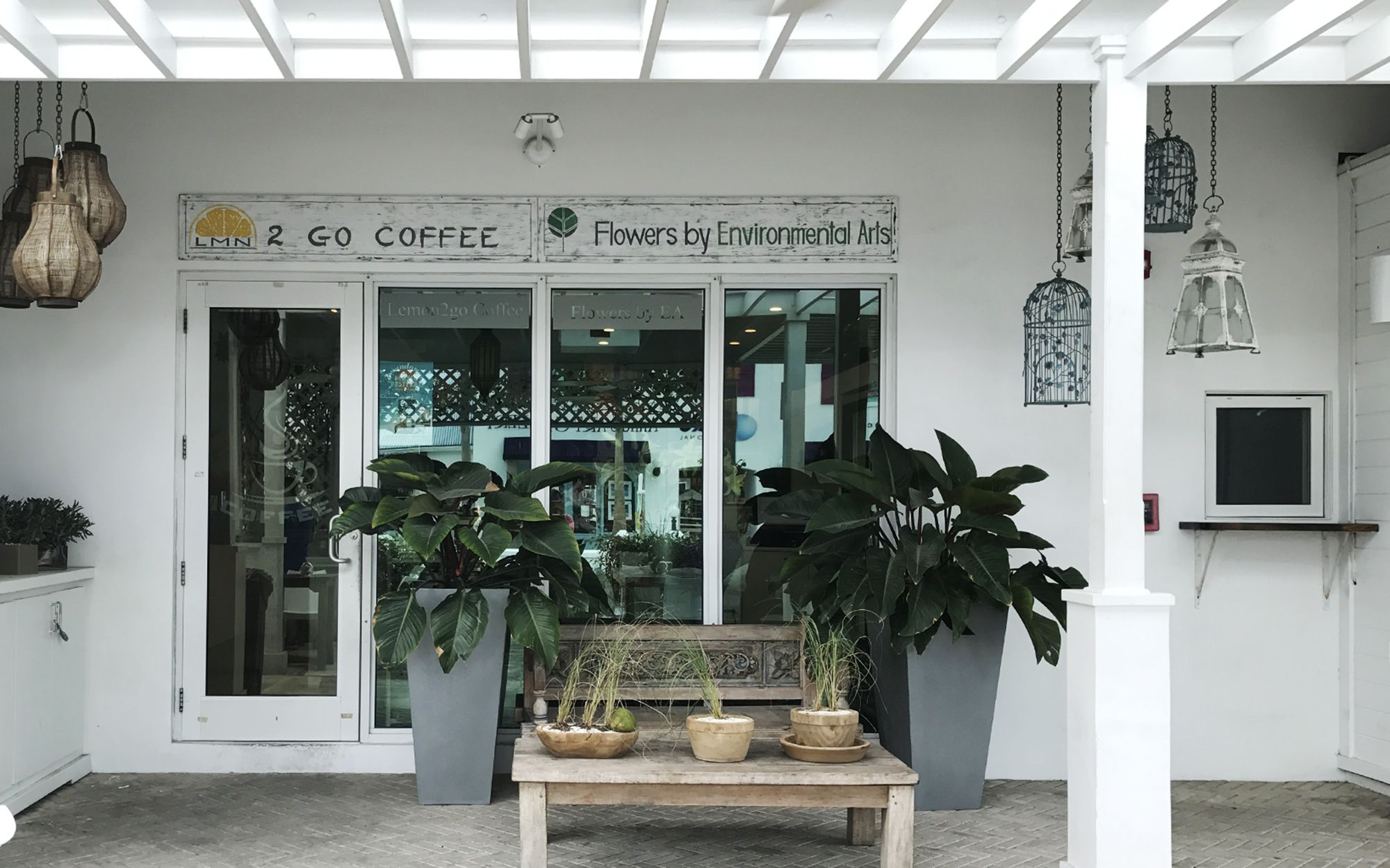 Coffee Flower, Sweet Coffee, Coffee Shop