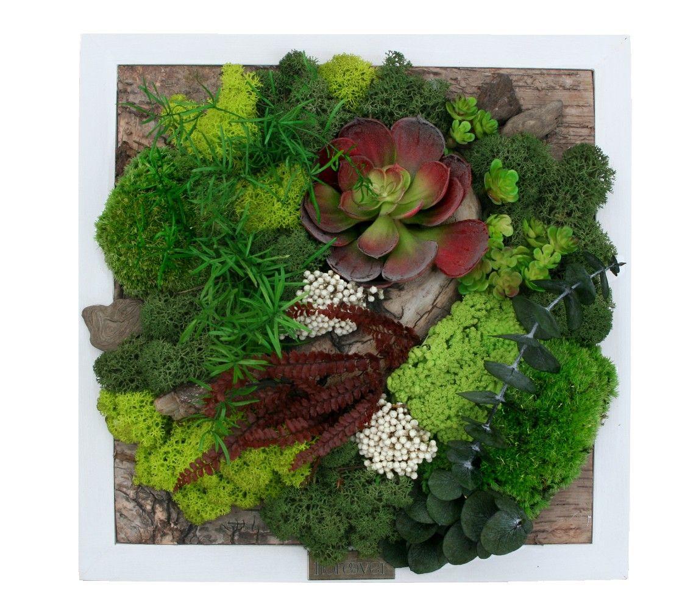 Tableau vegetal enji iro h28 5 tableau cadre mur - Tableau vegetal ...
