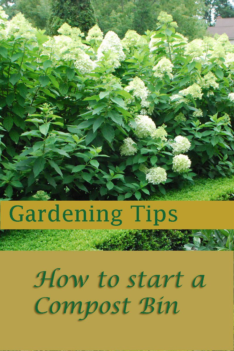 Find all the information on how to start a compost bin ...