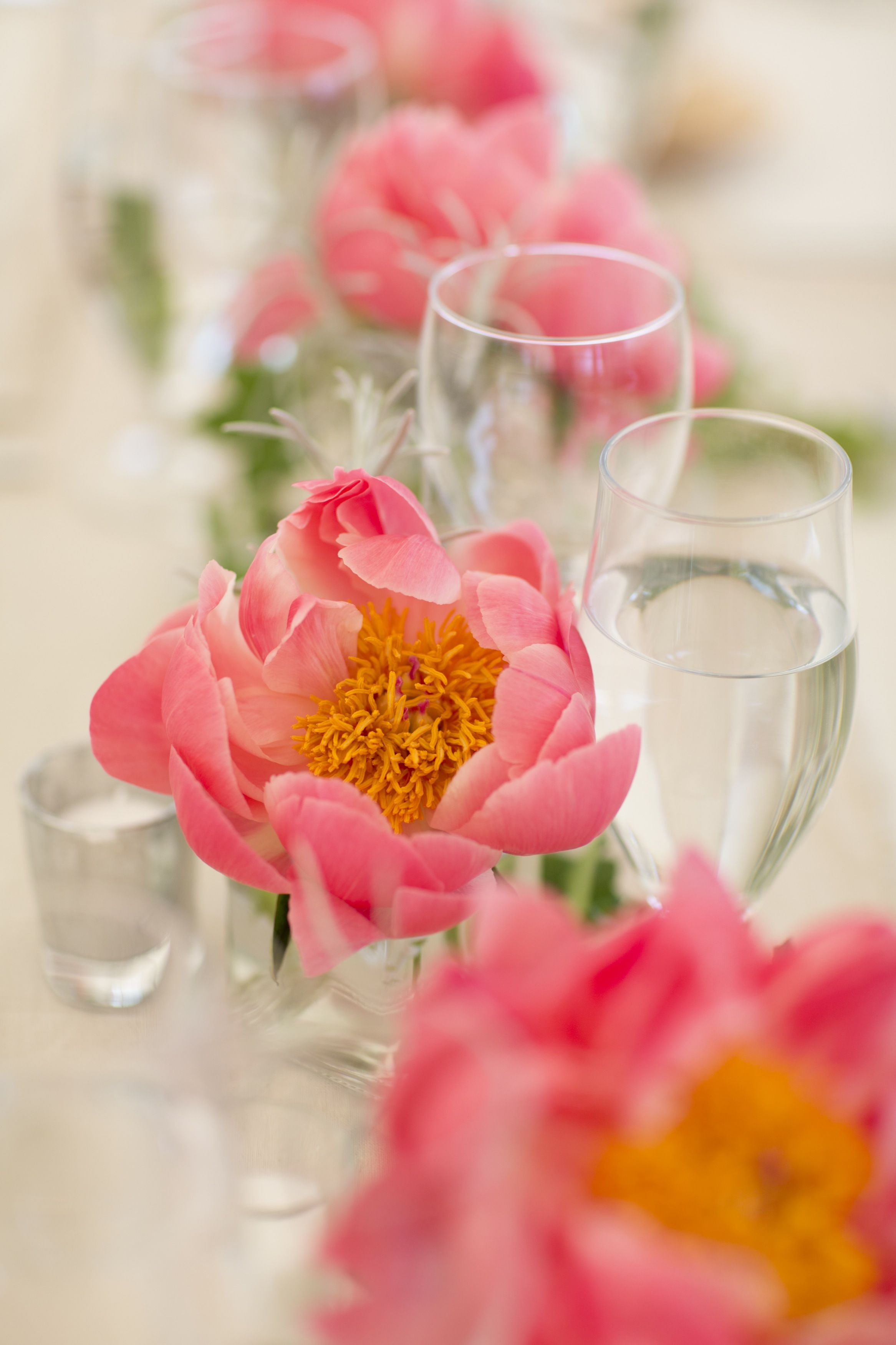 How much does wedding catering cost? Wedding catering