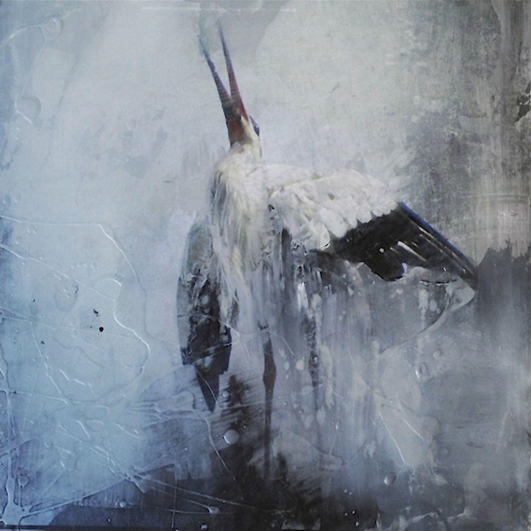 Gabriela Benevolenza Biography & Art For Sale - ArtRev.com ...