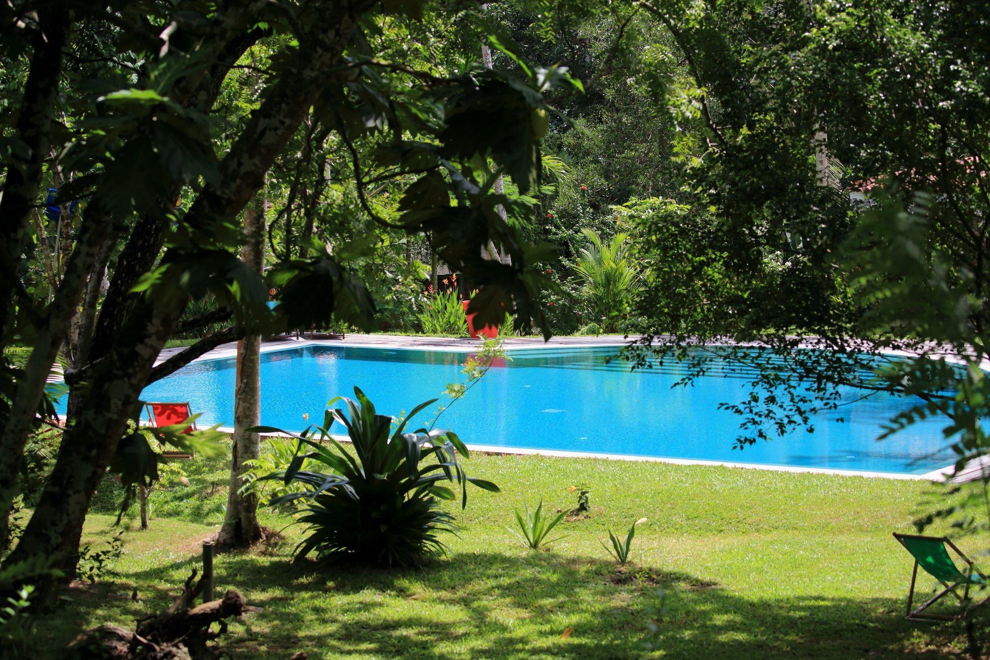 Piscine de la Villa Sepalika - Galle - Sri Lanka