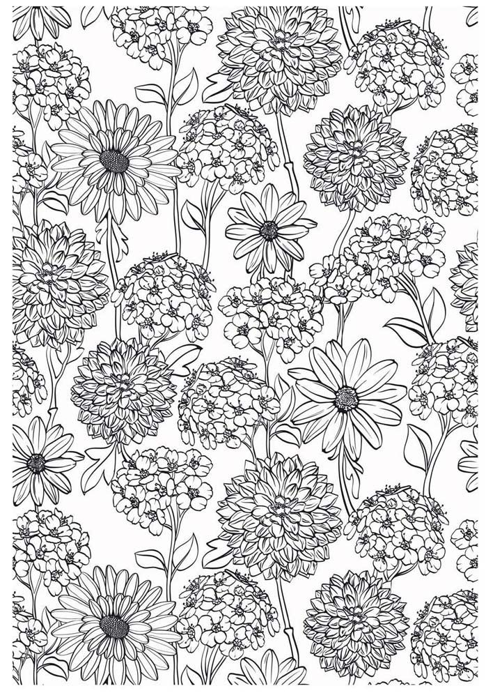 flower coloring pages colouring adult detailed advanced. Black Bedroom Furniture Sets. Home Design Ideas