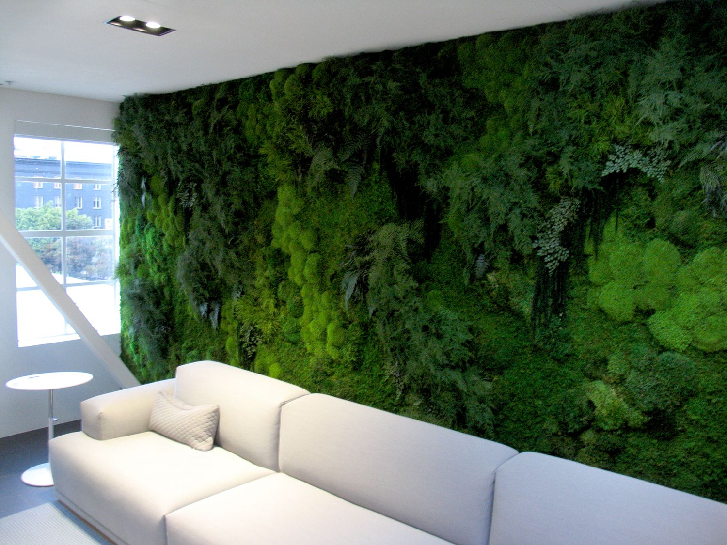 cc go sf 01 modern furniture is complimented by our lush plant wall