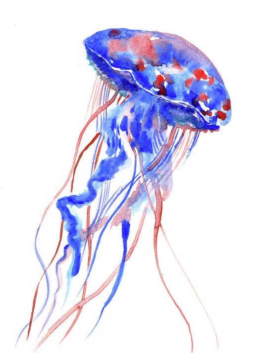 Jellyfish By Suren Nersisyan Original Watercolor Art Jellyfish Painting Original Watercolors