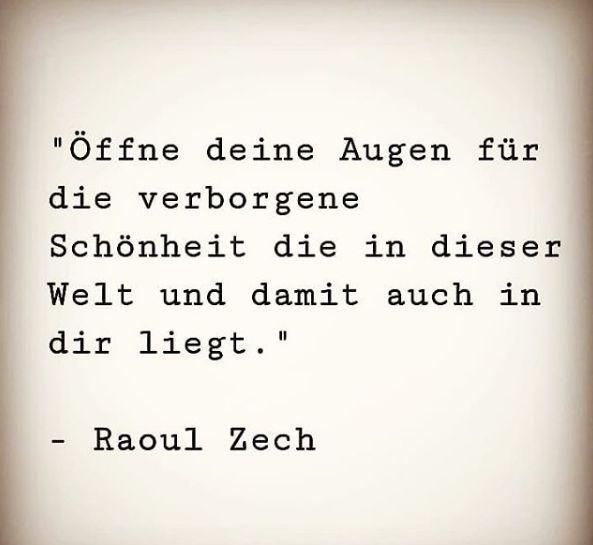 Zitat Raoul Zech | Lebensweisheiten, Lebensweisheiten
