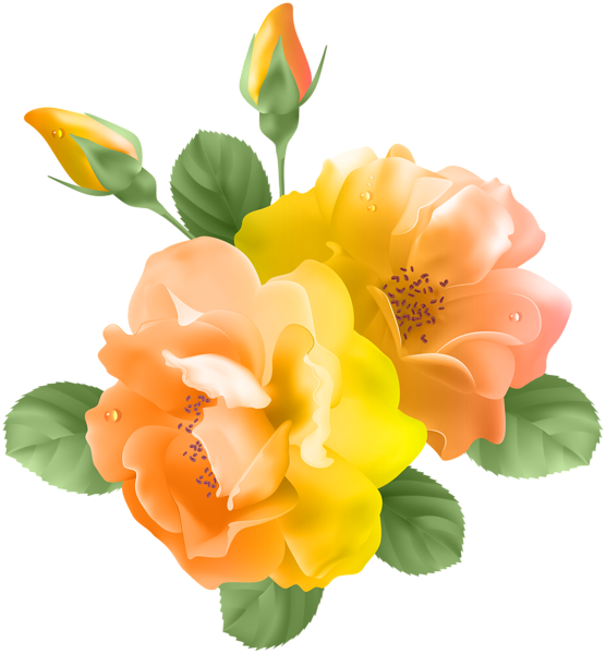Yellow Orange Rose Transparent PNG Clip Art Flower art