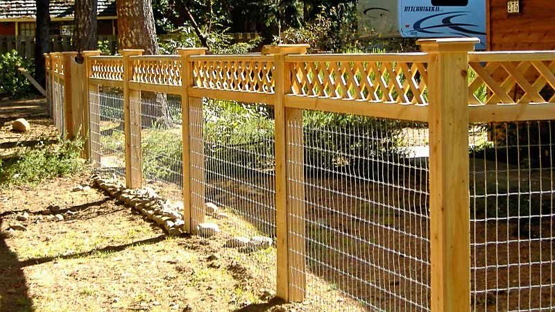 Different Types of Vegetable Garden Fencing fences in 2018