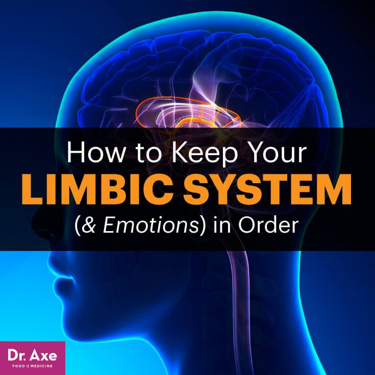 An Unbalanced Autonomic Nervous System Leads to Generalized Anxiety ...