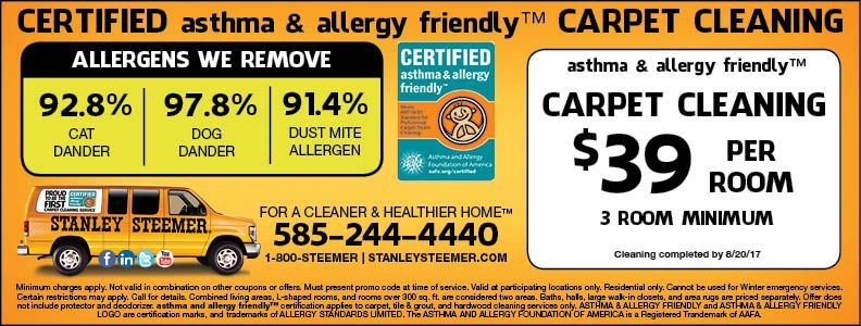 photo regarding Stanley Steemer Coupon Printable named Stanley Steemer consists of inexpensive carpet cleansing inside Rochester