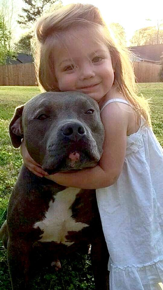 What Would The World Be Like Without Music Or Rivers Or The Green And Tender Grass What Would This World Be Like Without Dogs Dogs Pitbulls Animals Friends