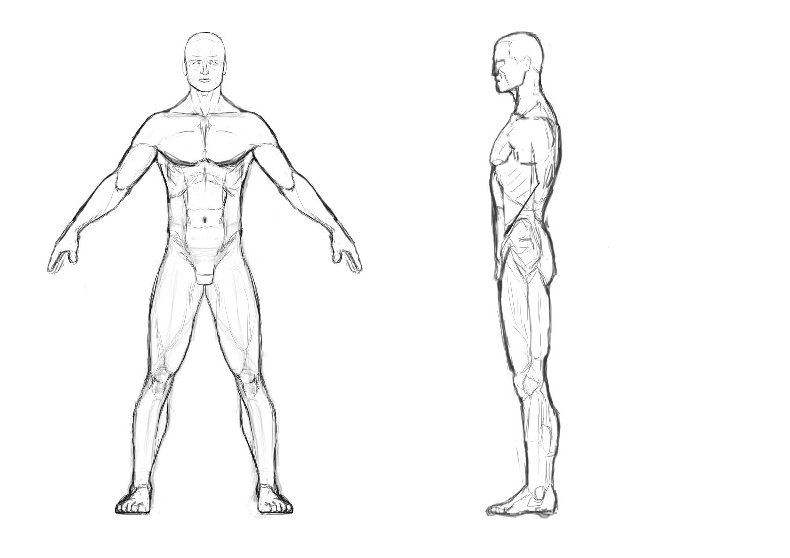 Male Body Template Outline Front And Back I Then Used Just