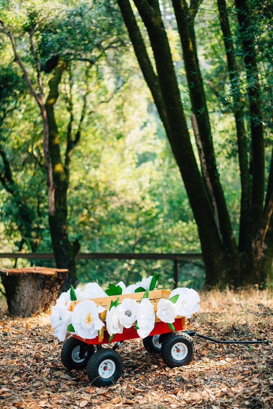 The brown beavers wedding flower girl wagon diywedding