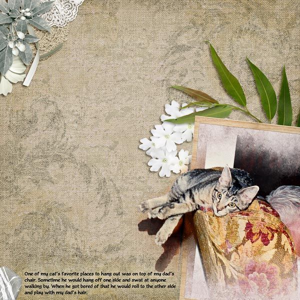"""Created using elements from """"the May 2014 Mega: Relax Collection"""" by #theStudio Design Team"""