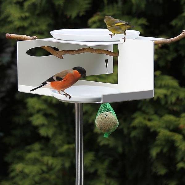 Mod Bird Bath Feeder On Pole Unique Bird Baths Bird Feeders