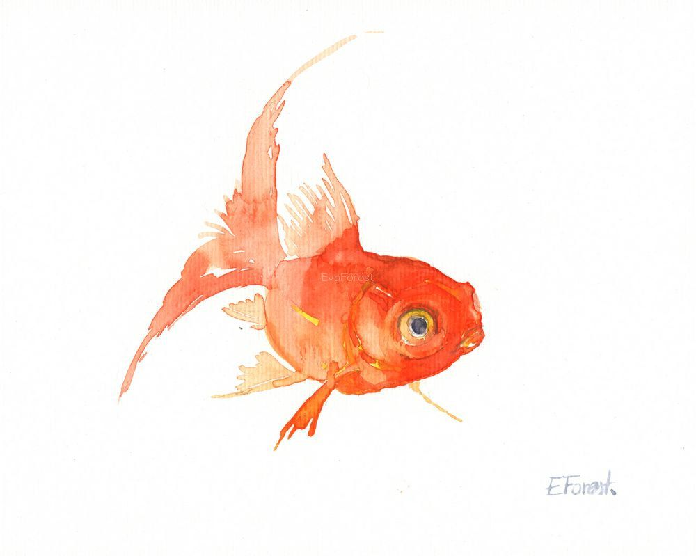 A little strange goldfish watercolor painting by eva for Poisson koy