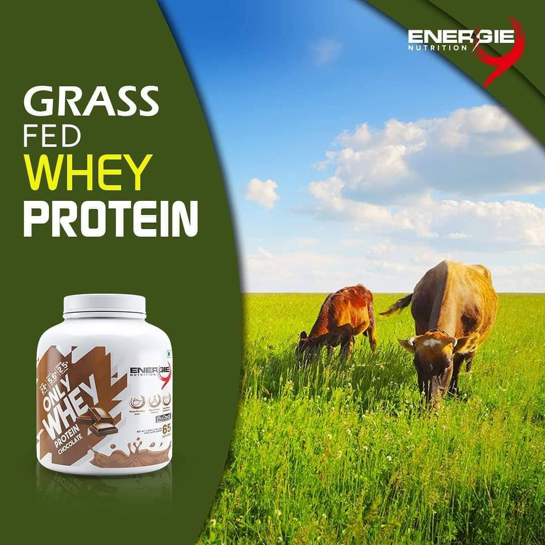Pin By Health And Fitness On Diet Natural Protein Best Protein Whey Protein
