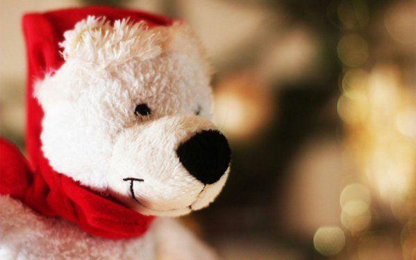 Login On Twitter Teddy Christmas Teddy Bear Teddy Bear