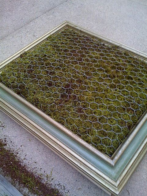 Use spanish moss to prevent your planting soil to fall out for How to make a vertical garden frame