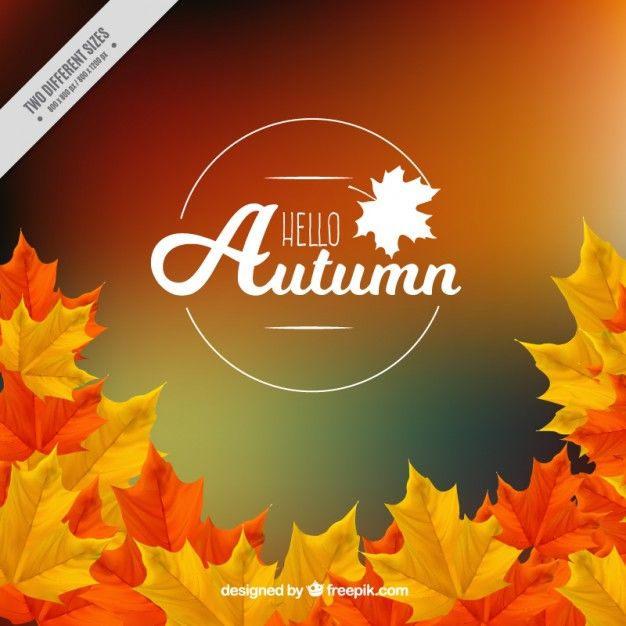 Autumn Vectors Photos And Psd Files Free Download October