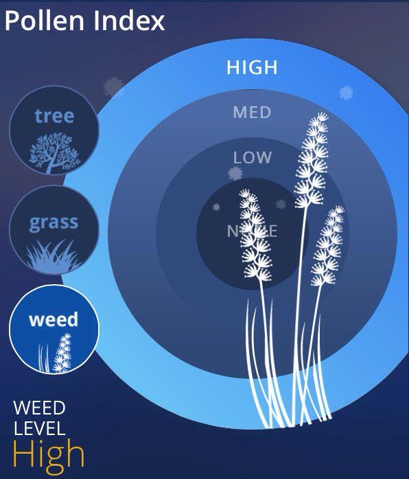 Where I live, the weed is high...MUAHAHAHA!