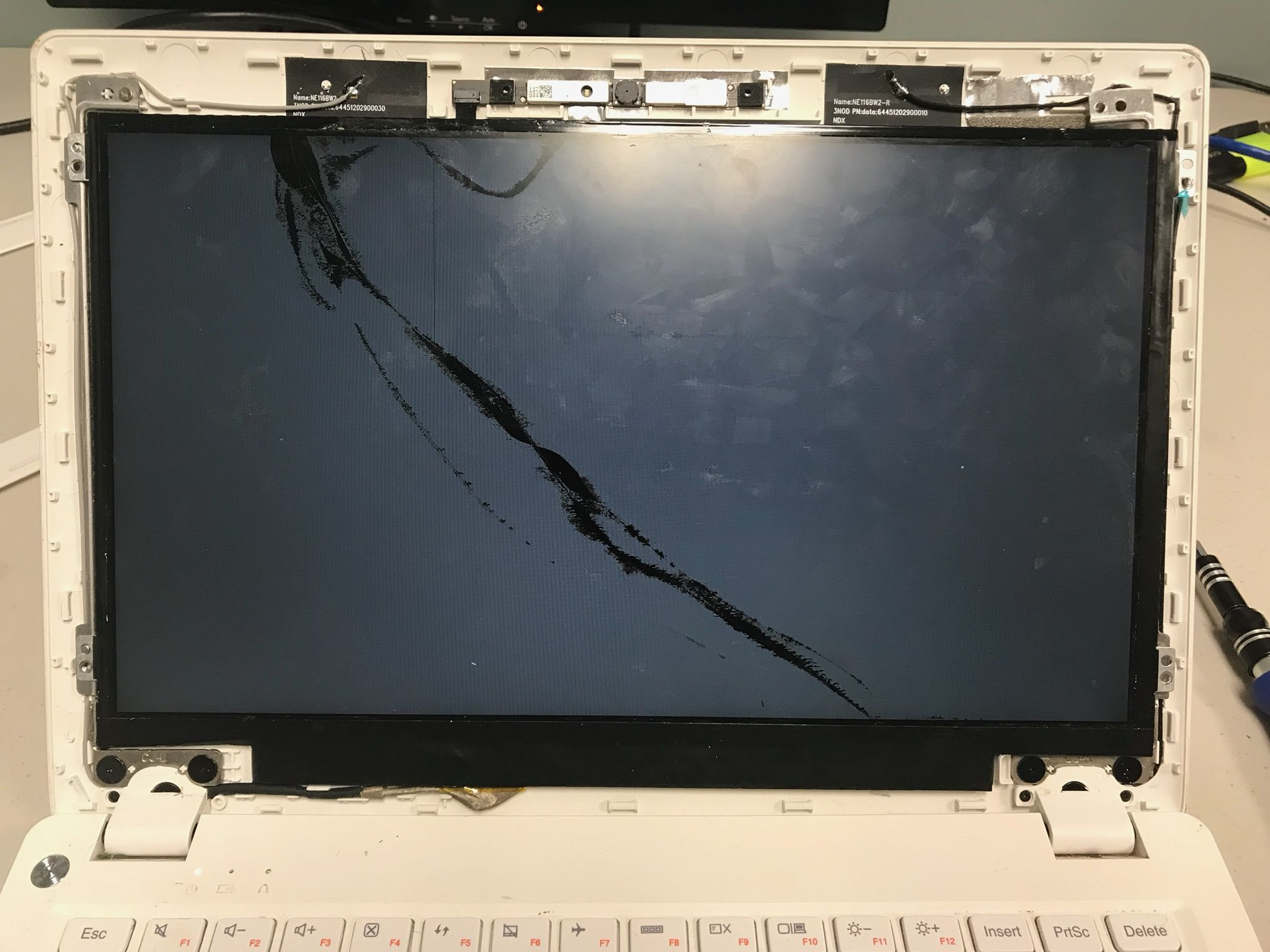 Summer Sale Laptop Screen Replacement Now Through August 31 We Are Offering 20 Off Our Labor C Laptop Screen Repair Computer Repair Services Laptop Repair