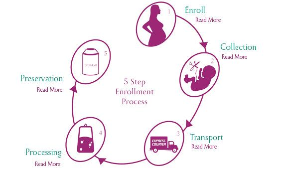 5 Simple Steps For Umbilical Cord Stem Cell Banking Is
