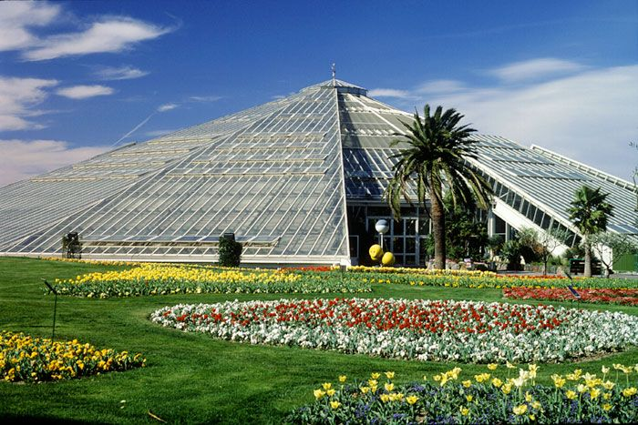 Phoenix Parc Floral de Nice   Been there. Loved that.   Pinterest ...