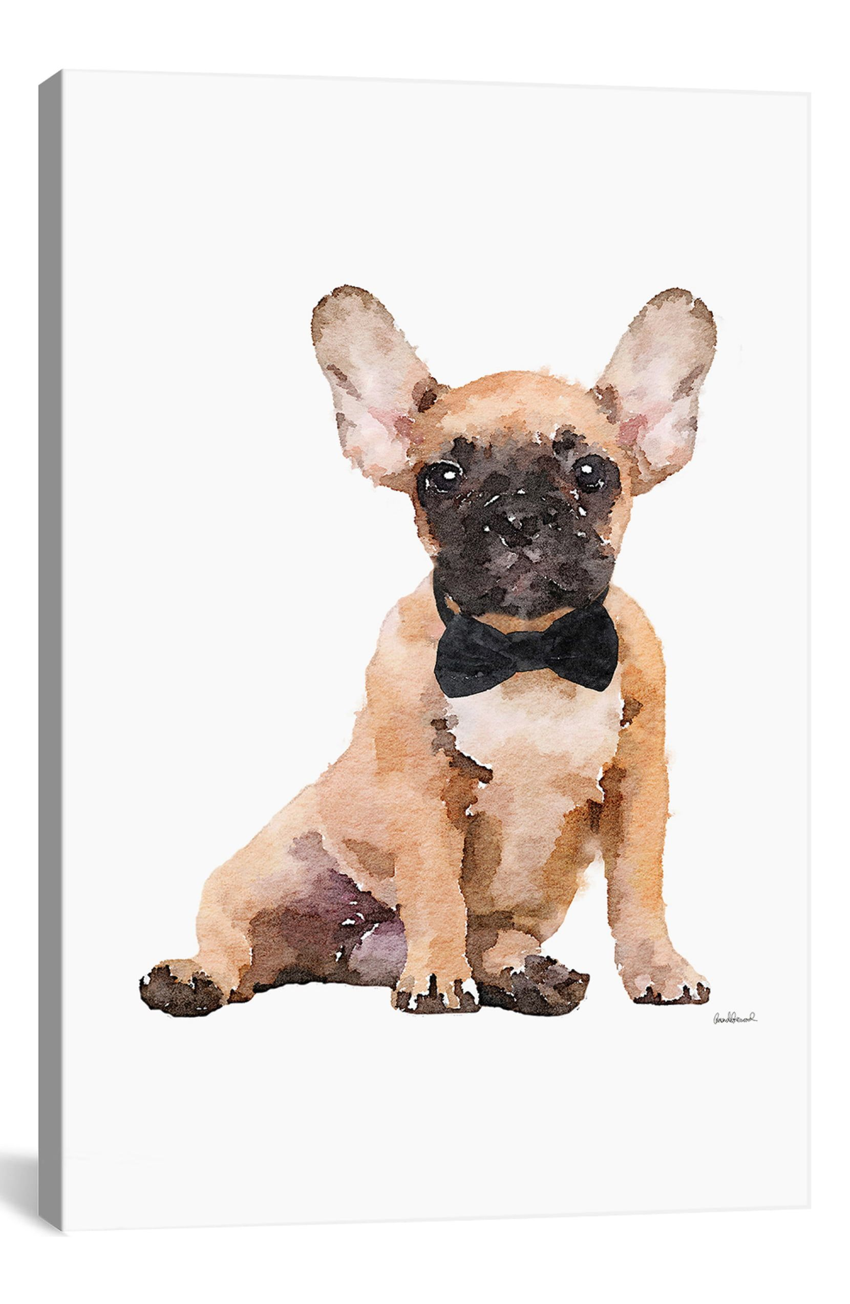 iCanvas Fawn Frenchie by Amanda Greenwood Giclée Print