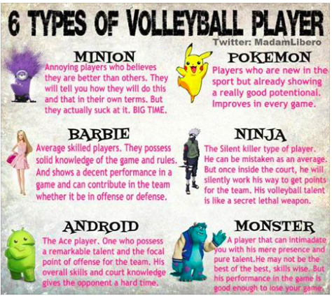 What Type Of Volleyball Player Are You By Twitter Com Madamlibero Volleyball Workouts Volleyball Players Volleyball Cheers