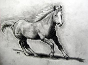 how to draw a realistic horse easy