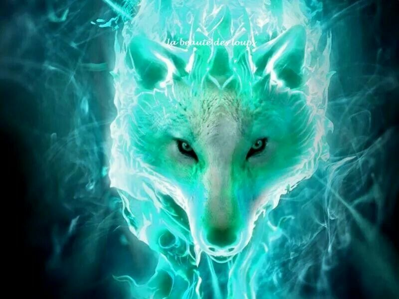 Beautiful Wolf fractal art