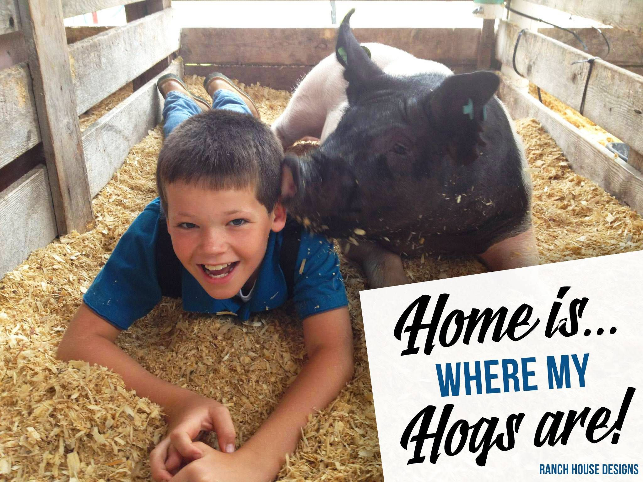 Home Is Where My Hogs Are - Ranch House Designs Livestock ... Ranch House Designs Pig on pig pool, pig bathroom, bird cage design, crate design, barn design, pig cooking, pig drawing, pig home, pig floor, bbq smoker design, silo design, pig door, pig sofa, pig painting, pig lamps, pig fabric, pig shelter, poultry farm design, pig accessories, pig food,