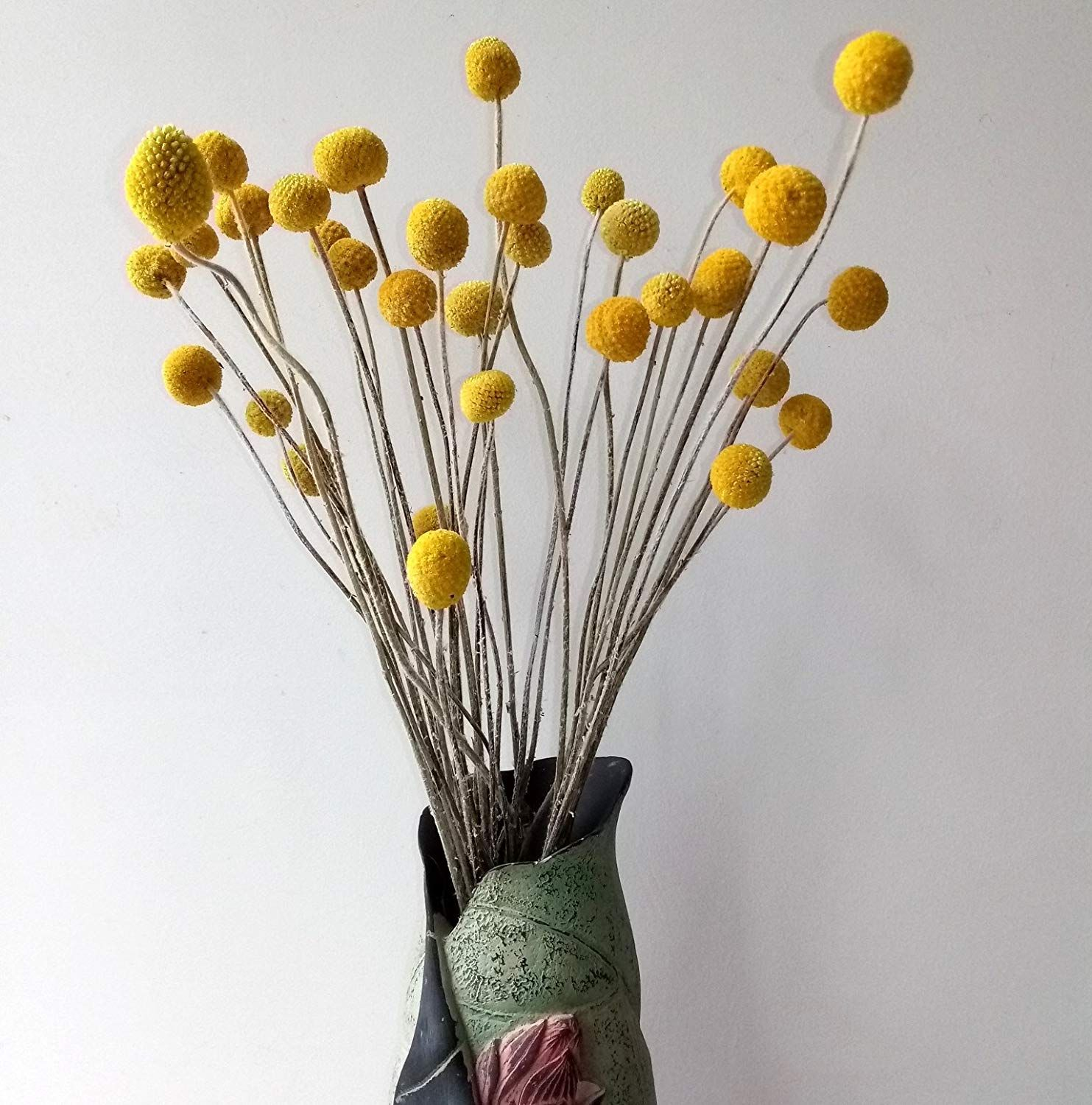 30 Stems Pack Dried Real Natural Craspedia Flowers Billy Button Balls 20 Tall Amazon Co Uk Kitch Billy Buttons Artificial Flower Bouquet Valentines Flowers
