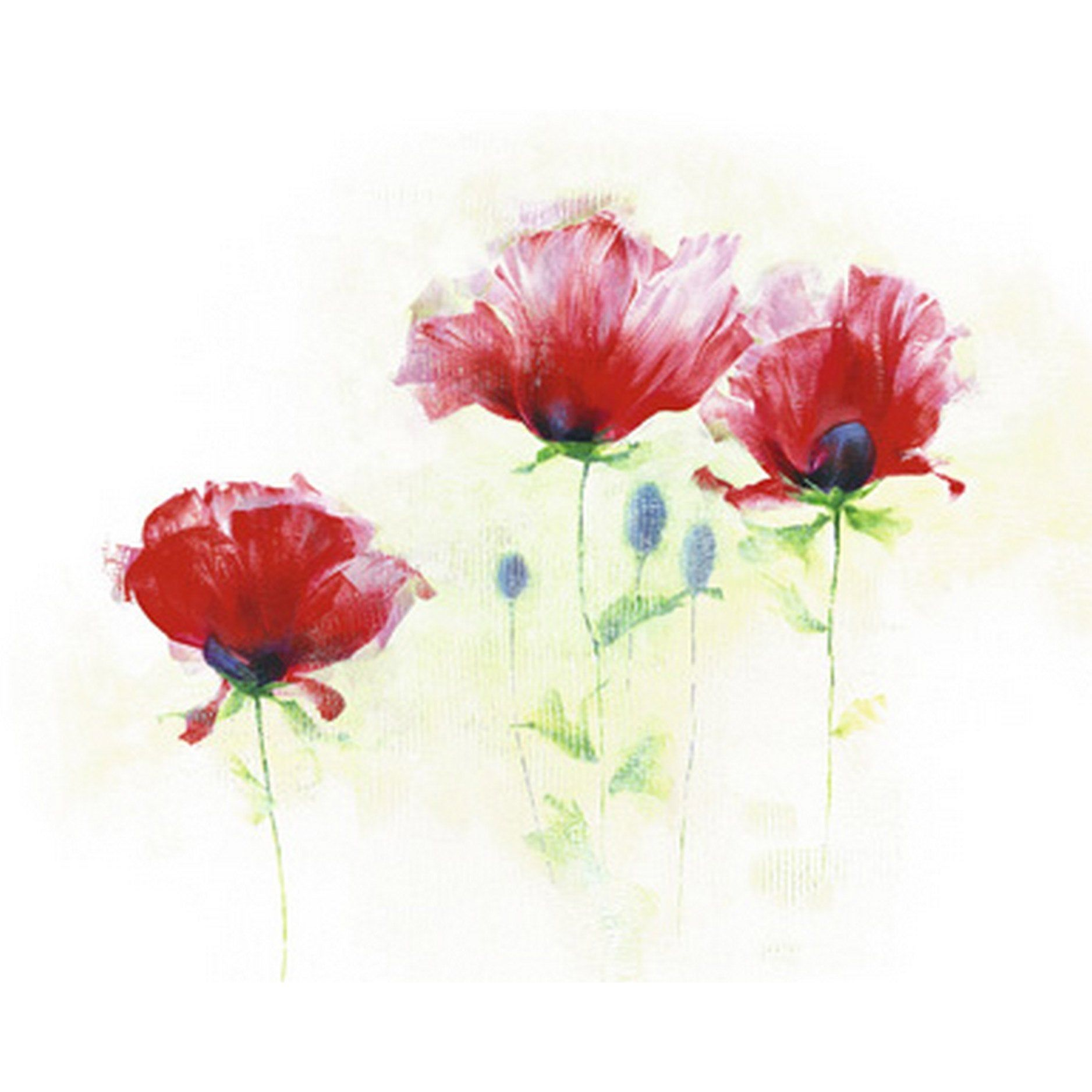 Affiche Red Poppies Ii L 40 X H 50 Cm Coquelicots Affiches