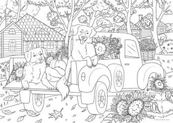 Fun Ride Printable Adult Coloring Page From Favoreads Coloring