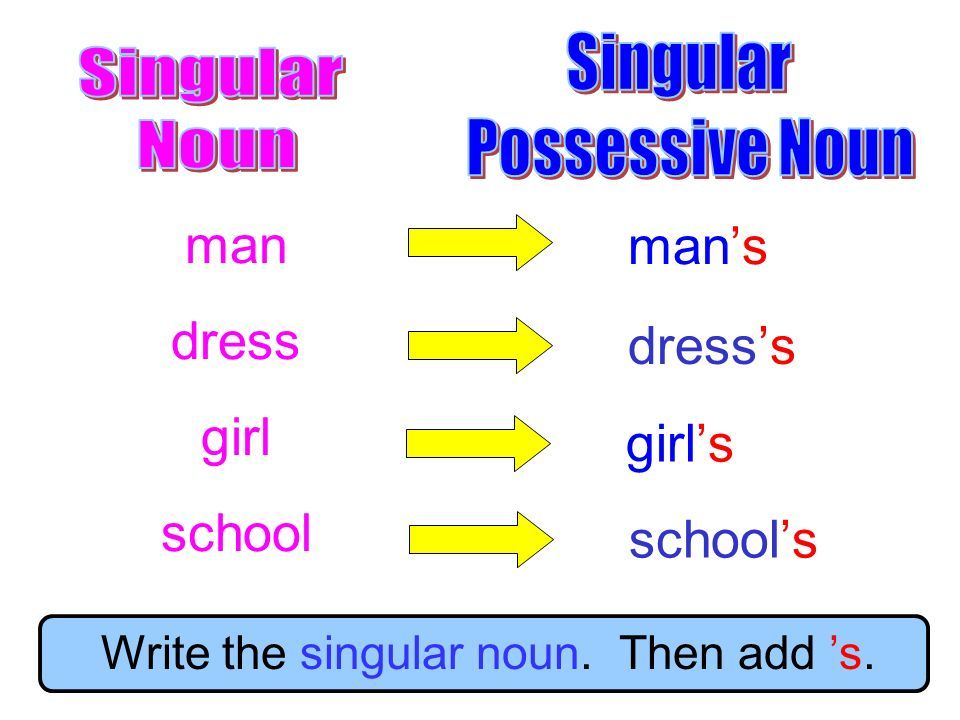 Great Grammar: Plural Possessive Nouns