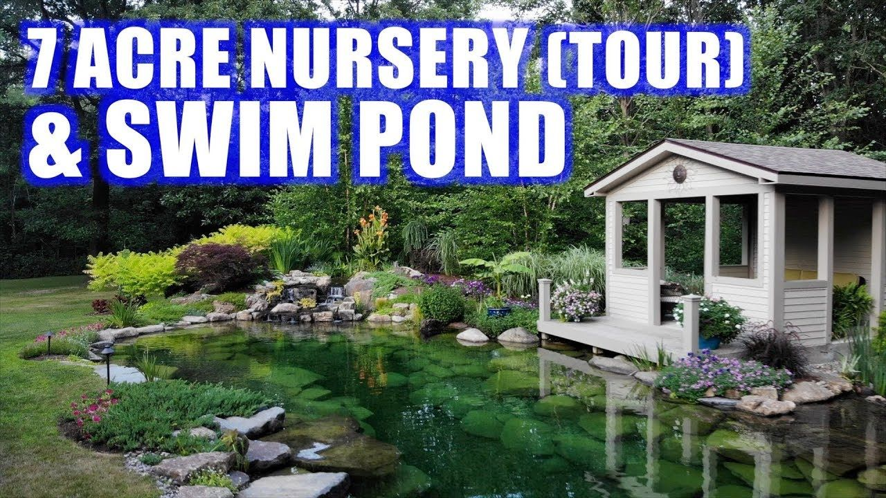 Ponds With Prices And Garden Tour Greg Wittstock The Pond Guy Youtube In 2020 Fish Pond Gardens Garden Tours Natural Swimming Ponds
