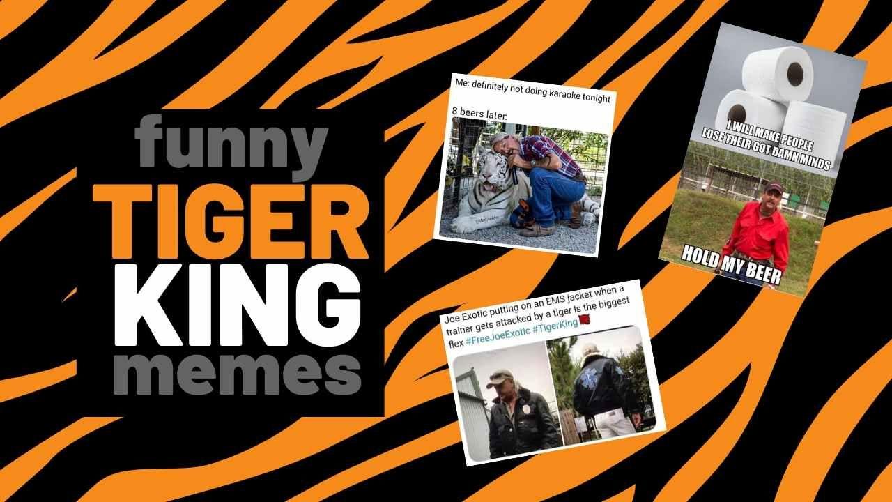 Best Tiger King Memes Memes, Funny tiger, Funny memes