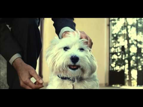 This Dog Food Ad Is Shamelessly And Effectively Manipulative