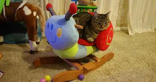 Little BB riding her favorite Snail. http://ift.tt/2dge1nO