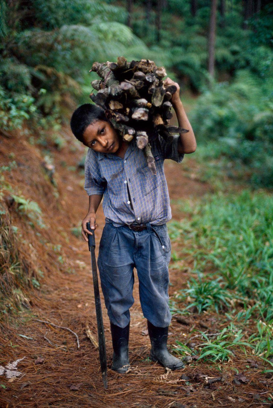 Children | Steve McCurry http://stevemccurry.com/galleries/children-0