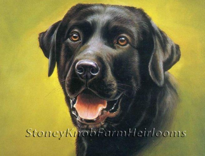 Black Labrador Portrait ~ Dogs ~ Counted Cross Stitch Pattern…