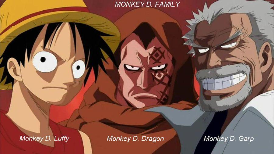 Monkey D Luffy Family Tree Monkey D Family By Oagm On