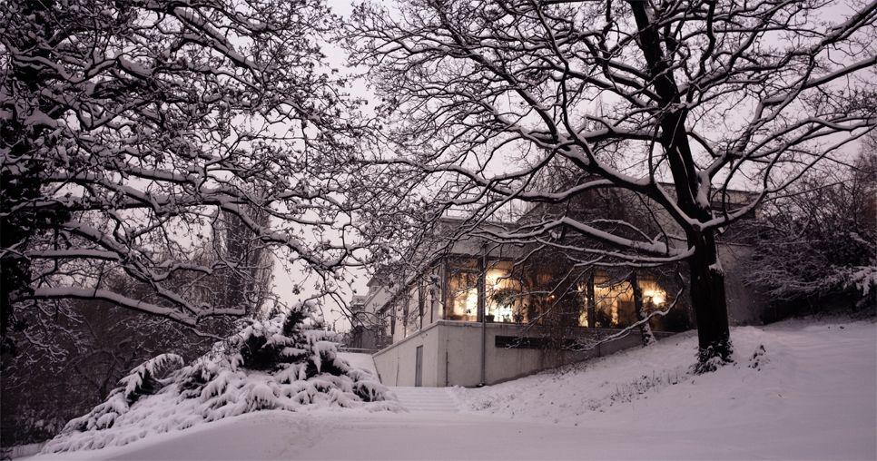 Blog da Arquiteta: Mies Van der Rohe: Villa Tugendhat é restaurada