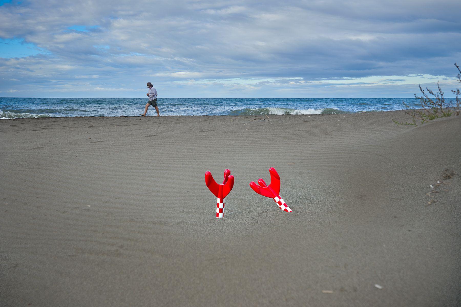 #basura espacial #flores en la playa