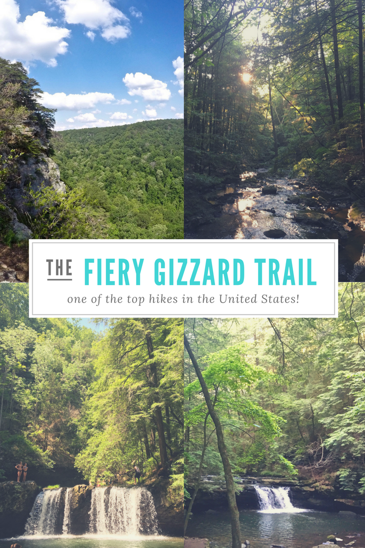 Located in East Tennessee, not far from Chattanooga, is one of the top hiking trails in the United States. Known as the Fiery Gizzard trail in South Cumberland State Park, it connects Grundy Forest to Foster Falls. It is a beautiful, yet trying hike! You will pass streams and waterfalls, swimming holes, rock formations and gorges, quiet wooded areas, and discover panoramic views.