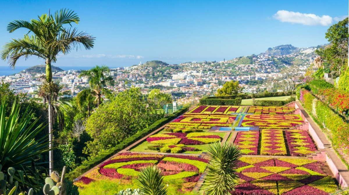 6f615b185158960823b4c5a818a3c71b - Hotel Ocean Gardens Portugal Madeira Funchal
