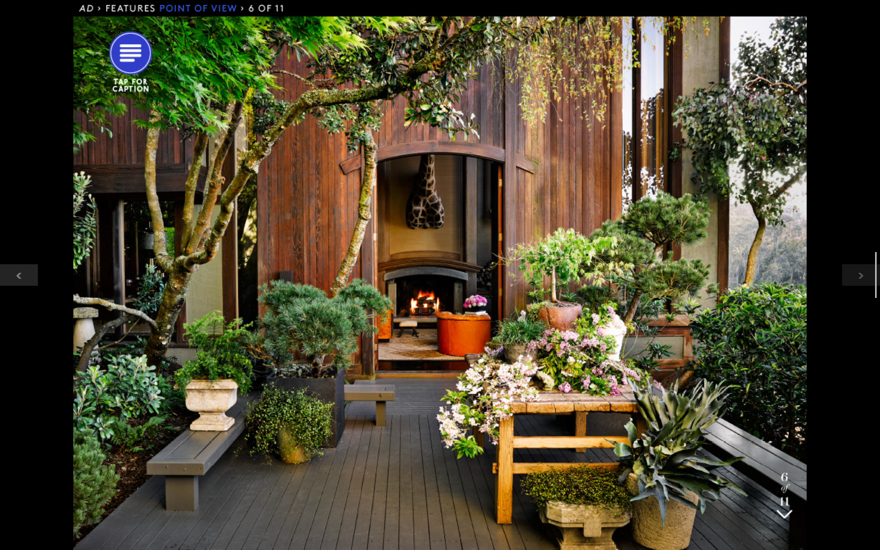 Outdoor space, Architectural Digest   San francisco houses ...